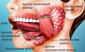 prichiny_i_lechenie_vospaleniya_slyunnoy_zhelezy_-1355621816.jpg